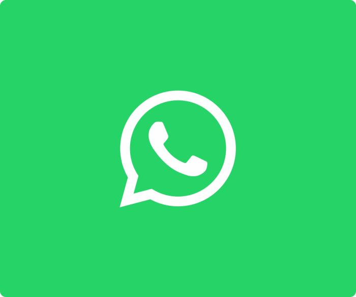 WhatsApp Logo 2016 verde
